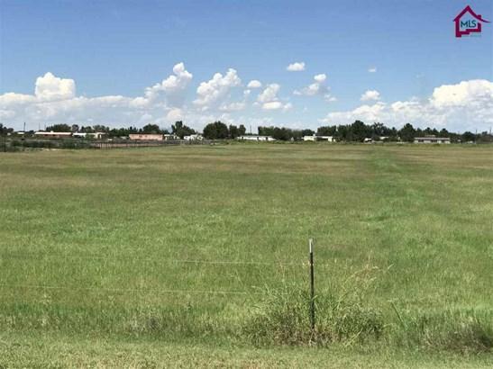 Farm - La Mesa, NM (photo 4)