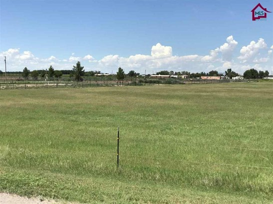 Farm - La Mesa, NM (photo 5)