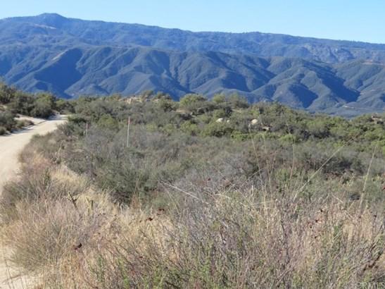 Land/Lot - Aguanga, CA (photo 4)