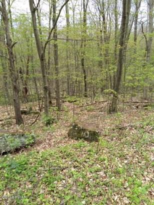 Land - Pleasant Mount, PA (photo 2)