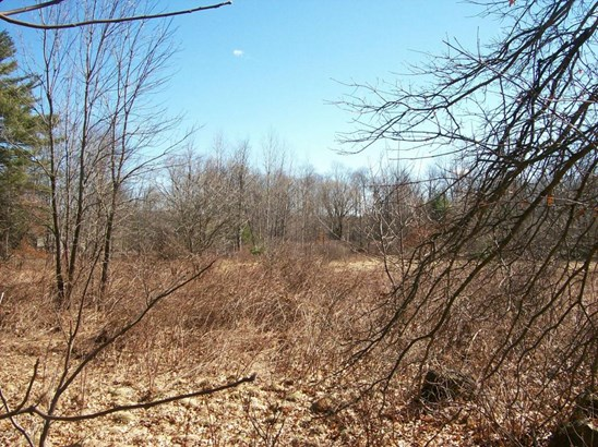 Raw Land - Bethany, PA (photo 1)
