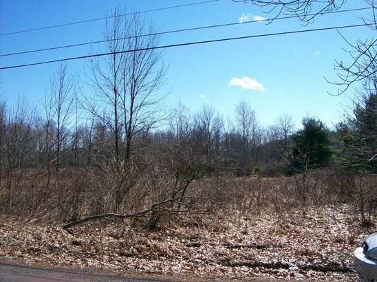 Raw Land - Bethany, PA (photo 3)