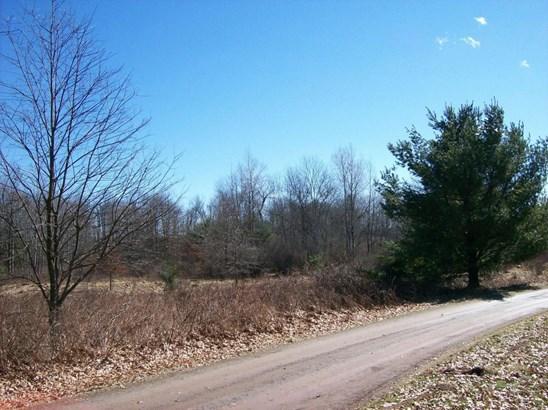 Raw Land - Bethany, PA (photo 4)