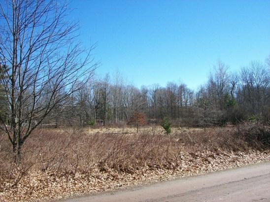 Raw Land - Bethany, PA (photo 5)