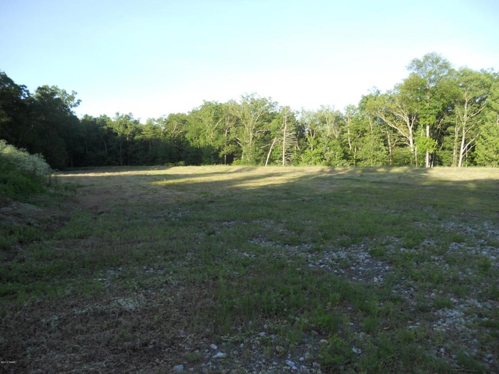 Approved Lot,Raw Land - Dingmans Ferry, PA (photo 3)