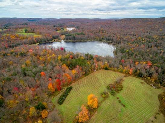 Raw Land,Rural - Greentown, PA (photo 1)