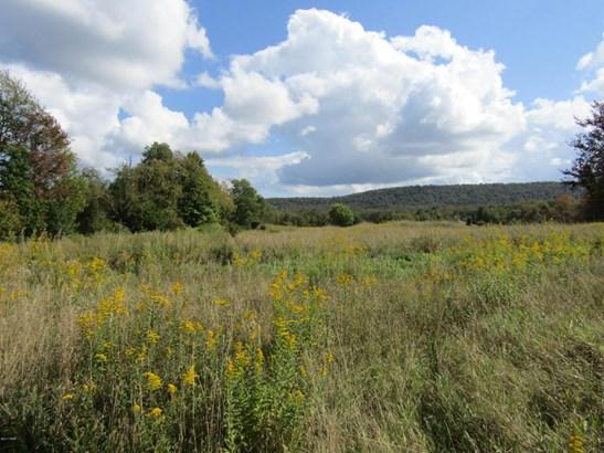 Raw Land,Rural - Greentown, PA (photo 3)