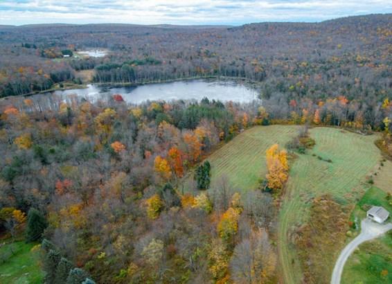 Raw Land,Rural - Greentown, PA (photo 4)