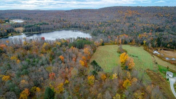 Raw Land,Rural - Greentown, PA (photo 5)