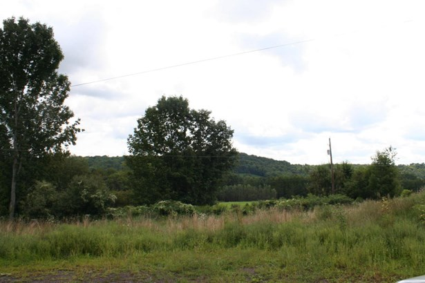 Land w/Buildings,Other-See Remarks - Equinunk, PA (photo 1)