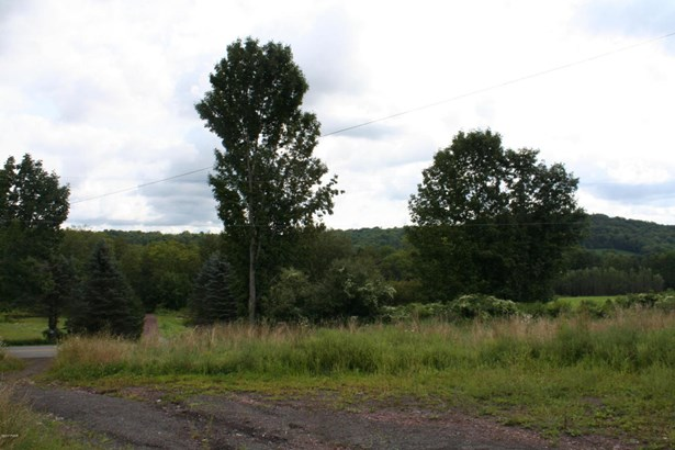 Land w/Buildings,Other-See Remarks - Equinunk, PA (photo 5)