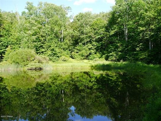 Land - Equinunk, PA (photo 1)