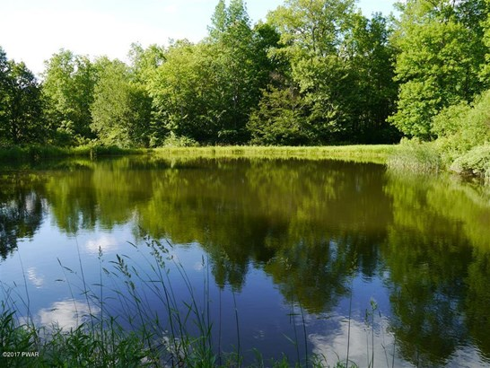 Land - Equinunk, PA (photo 2)