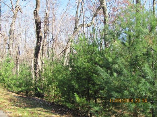 Approved Lot,Raw Land,Rural - Dingmans Ferry, PA (photo 4)