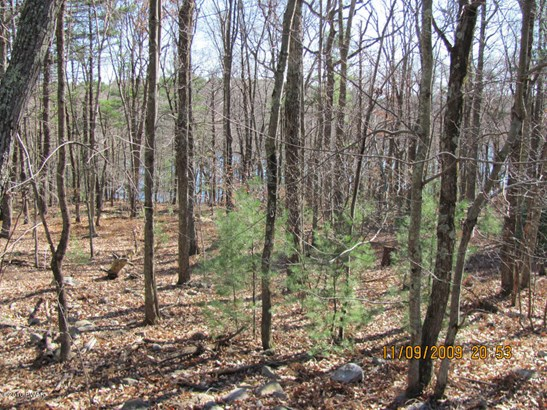 Approved Lot,Raw Land,Rural - Dingmans Ferry, PA (photo 5)