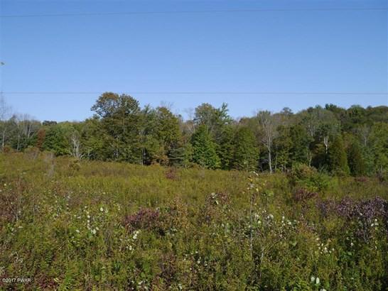 Raw Land - Hamlin, PA (photo 3)