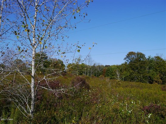 Raw Land - Hamlin, PA (photo 4)