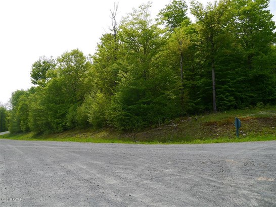 Approved Lot,Improved Lot - Equinunk, PA (photo 3)