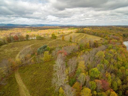 Raw Land - Honesdale, PA (photo 4)