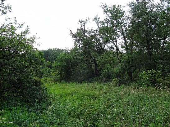 Raw Land,Rural - Beach Lake, PA (photo 5)