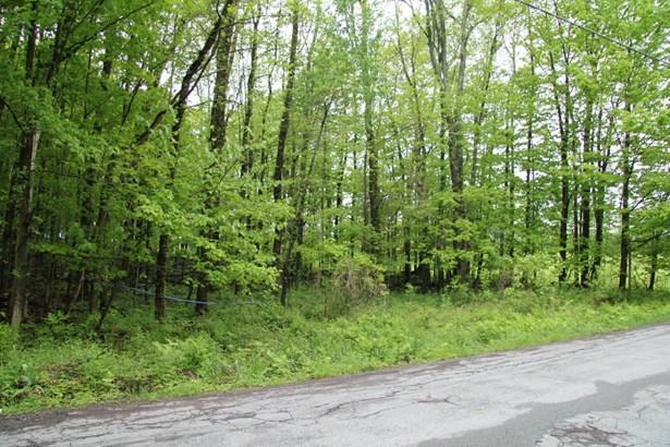 Raw Land - Waymart, PA (photo 4)
