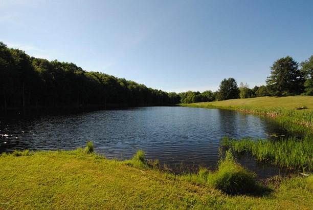 Raw Land,Rural - Waymart, PA (photo 2)