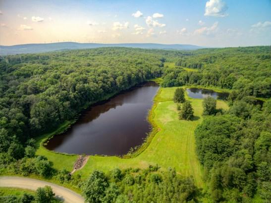 Raw Land,Rural - Waymart, PA (photo 4)