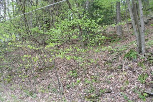 Land - Prompton, PA (photo 1)