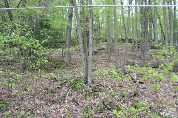 Land - Prompton, PA (photo 2)