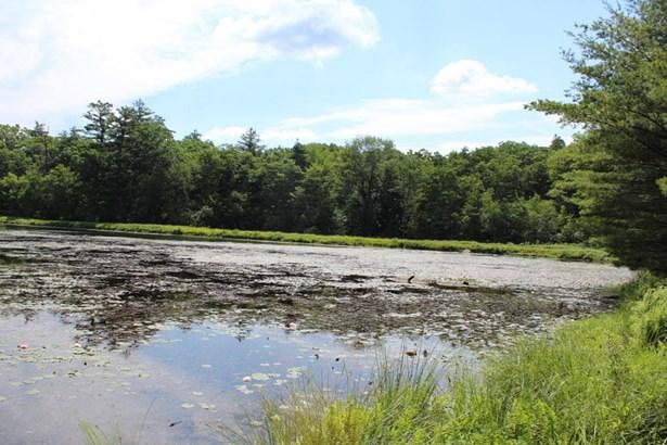 Raw Land - Dingmans Ferry, PA (photo 4)