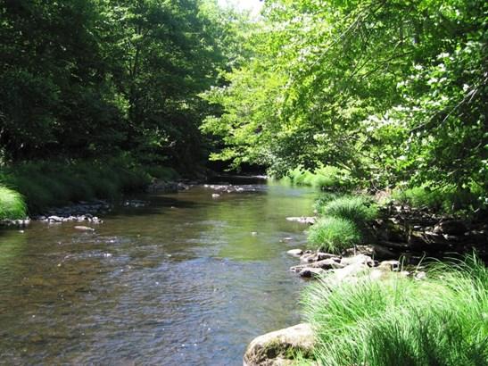 Raw Land - Forest City, PA (photo 2)