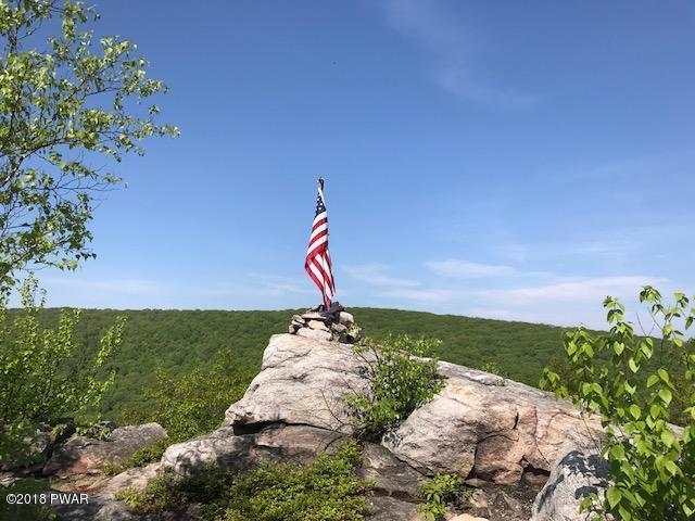Raw Land - Forest City, PA (photo 3)