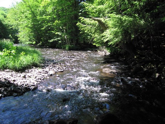 Raw Land - Forest City, PA (photo 5)