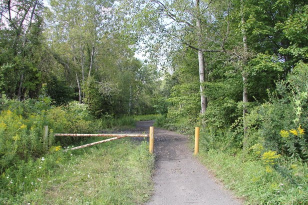 Raw Land - Forest City, PA (photo 1)