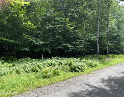 Approved Lot,Improved Lot - Gouldsboro, PA