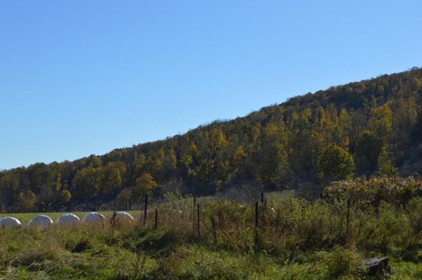 Land w/Buildings - Union Dale, PA (photo 1)