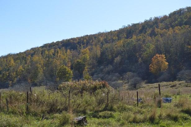 Land w/Buildings - Union Dale, PA (photo 3)