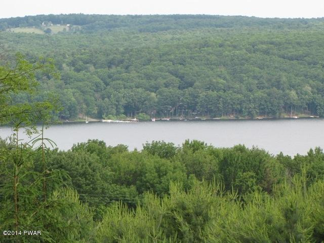 Approved Lot,Raw Land - Paupack, PA (photo 2)