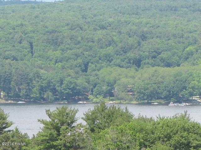 Approved Lot,Raw Land - Paupack, PA (photo 3)