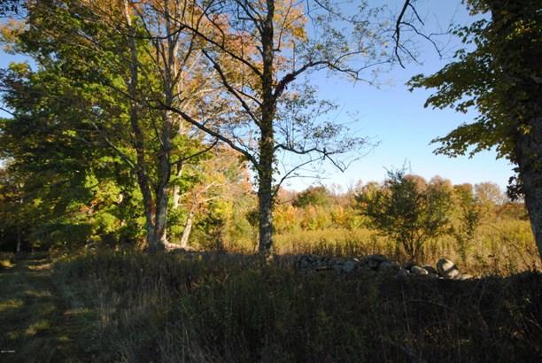 Raw Land - Honesdale, PA (photo 3)
