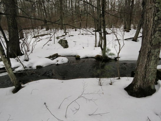 Raw Land - Dingmans Ferry, PA (photo 4)