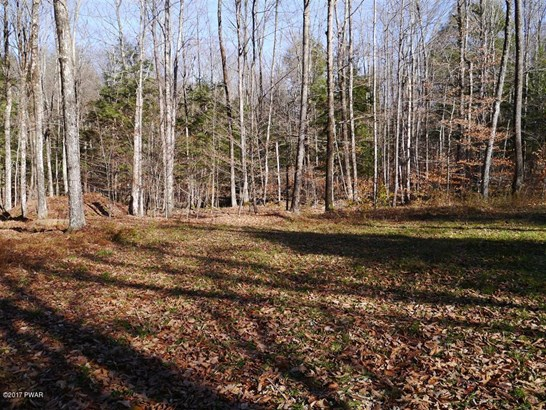 Approved Lot - Pleasant Mount, PA (photo 2)