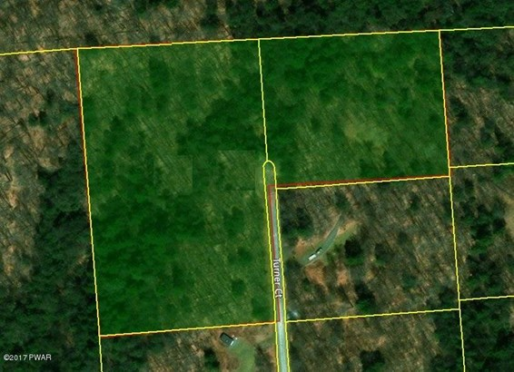 Approved Lot - Pleasant Mount, PA (photo 4)