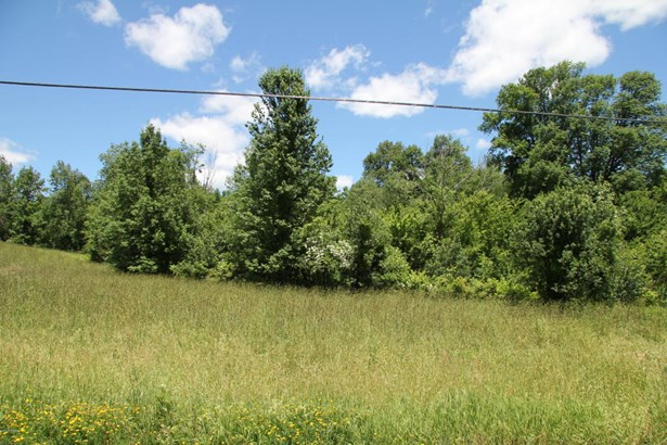 Approved Lot,Rural - Pleasant Mount, PA
