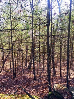Approved Lot - Dingmans Ferry, PA (photo 3)