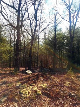Approved Lot - Dingmans Ferry, PA (photo 4)