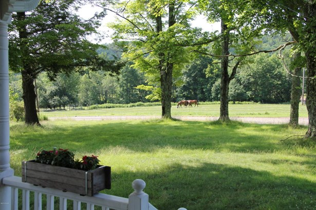 Farm House, Detached - Susquehanna, PA (photo 5)