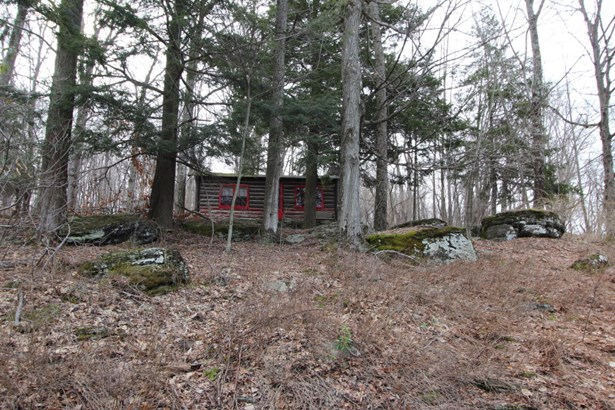 Cabin,Log Home, Detached - Starrucca, PA (photo 3)