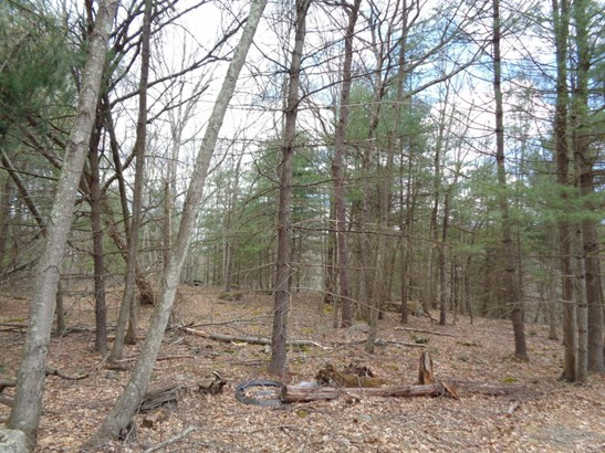 Approved Lot - Rowland, PA (photo 1)