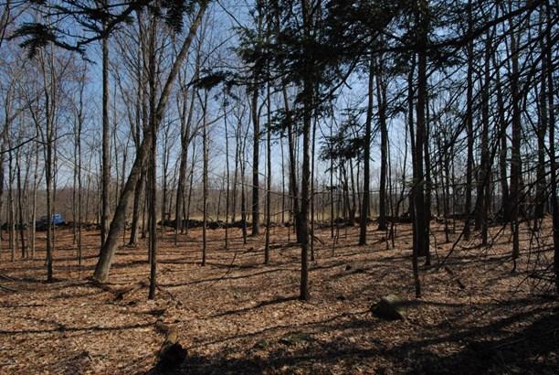 Raw Land,Rural - Waymart, PA (photo 1)